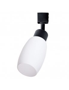 Трековый светильник Arte Lamp MIIA A3055PL-1BK