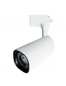 Светильник Arte Lamp BARUT A4563PL-1WH