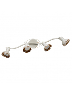 Спот Arte Lamp FOCUS A5219PL-4WG