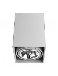 Светильник Arte Lamp CARDANI GRANDE A5936PL-1WH